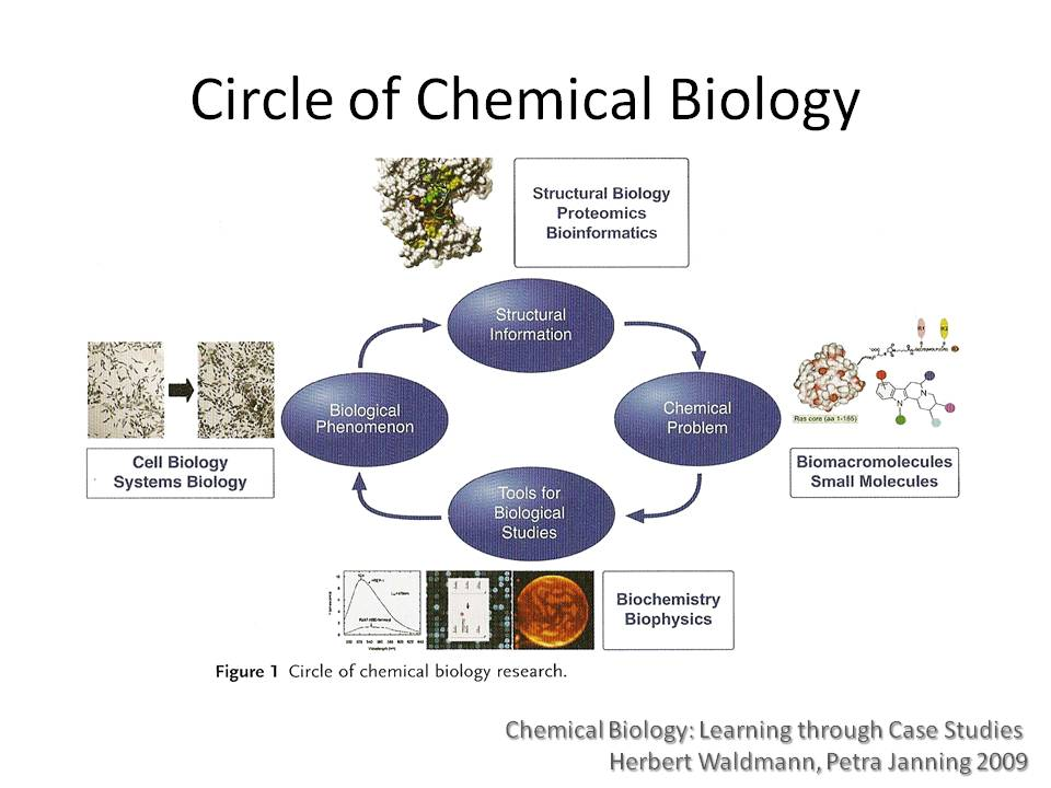 chemical and biological The howard p isermann department of chemical and biological engineering ricketts building rensselaer polytechnic institute 110 8th street | troy, ny 12180.